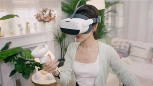 VR Expert Pico Neo 3 action